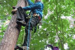 kletterwald2