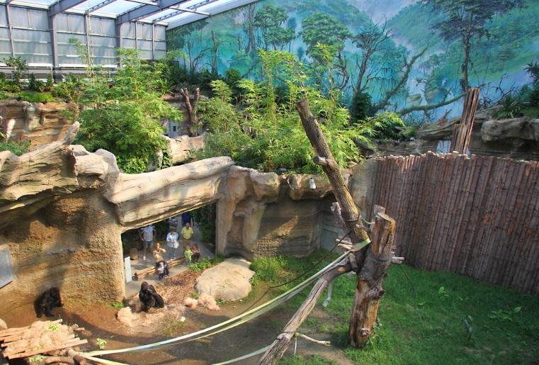 parken ozeaneum stralsund